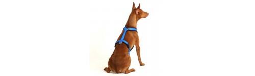 SOFA Dog Wear - Y pro chrtí plemena